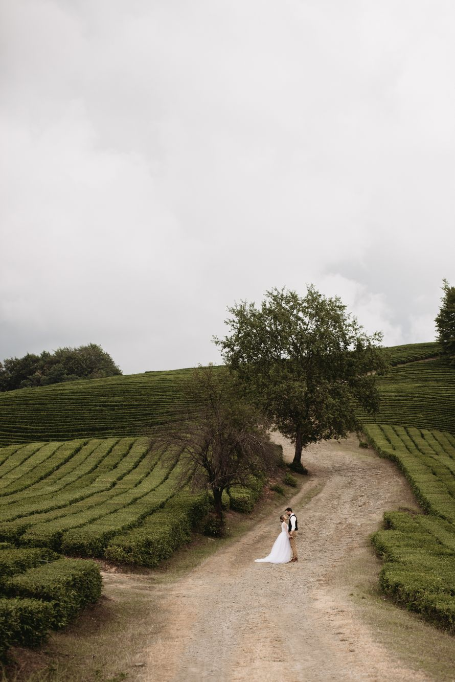Фото 18909382 в коллекции Портфолио - Christin Wedding - свадебное агентство