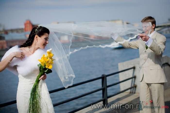 Фото 64968 в коллекции Наши клиенты! - МирОн - ваше свадебное агентство