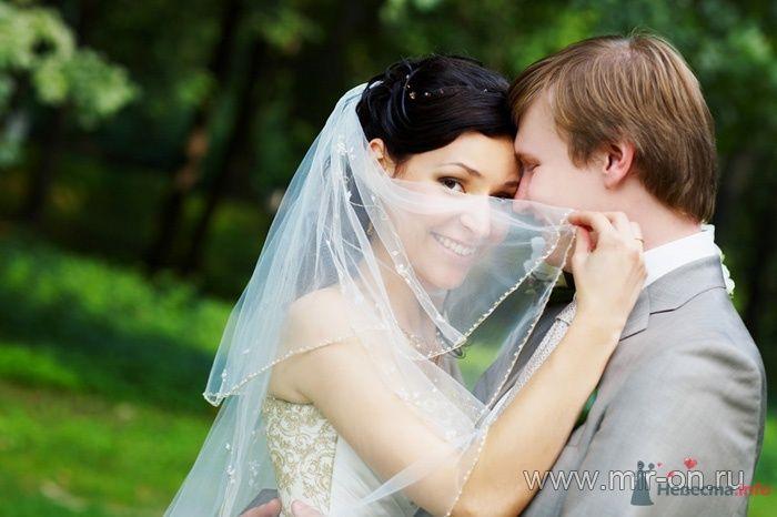 Фото 64989 в коллекции Наши клиенты! - МирОн - ваше свадебное агентство