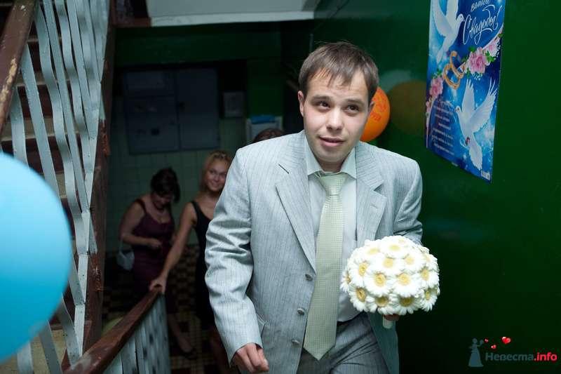 Фото 132683 в коллекции Мои фотографии - Zmeyka