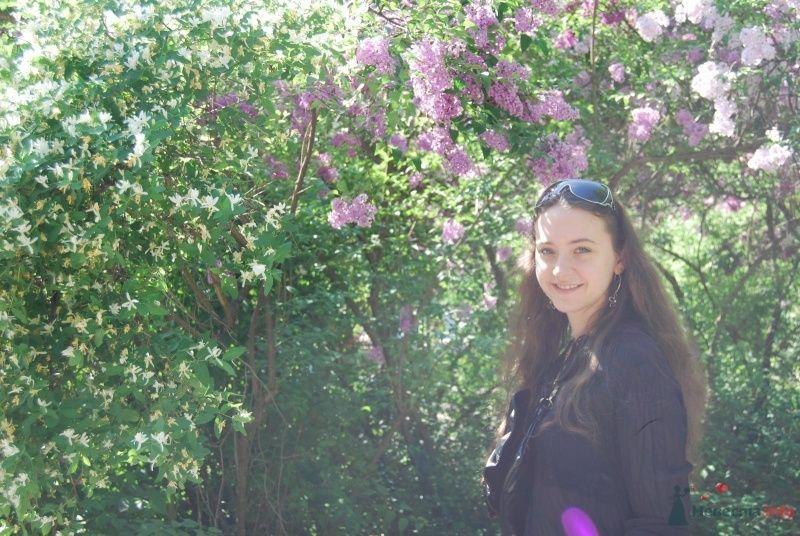 Фото 70366 в коллекции Мои фотографии - ~Elle~