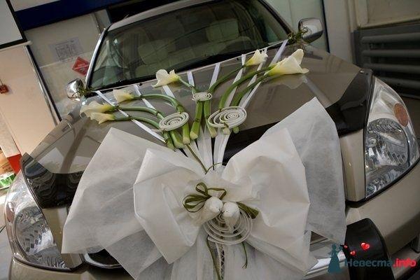 Фото 109793 в коллекции Подготовка к свадьбе - besol