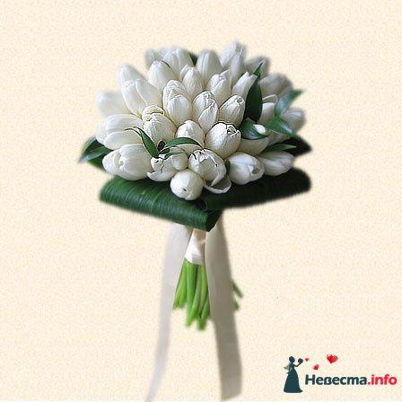 или лучше тюльпаны - фото 101031 Anita