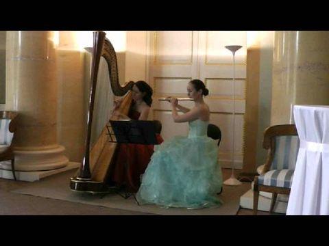 Флейта и арфа