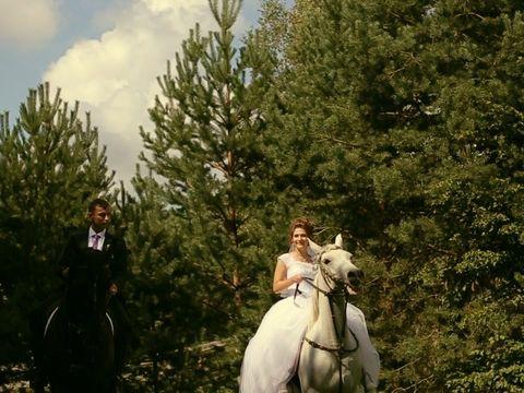 Дмитрий и Анастасия 20 августа 2016 (Свадебный клип)
